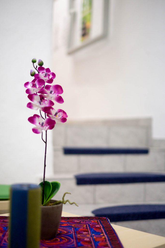 Impressionen - Fotogalerie & Einblicke | Adamus Yoga Studio
