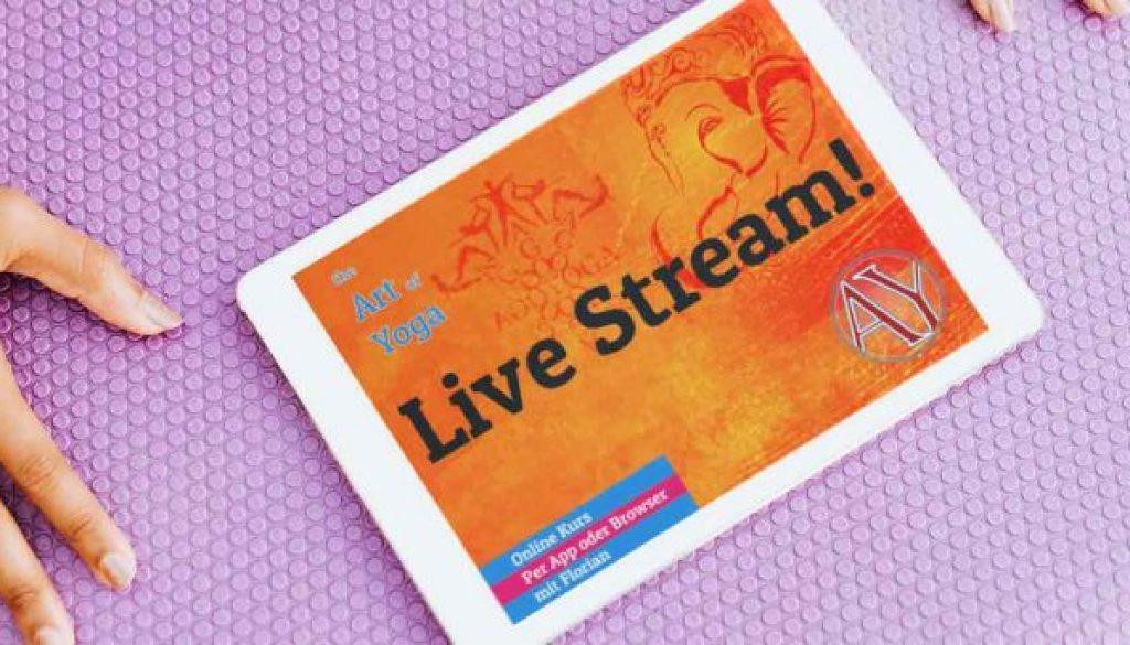 Online Kurs - Live Stream